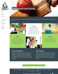 Elite Cricket website design